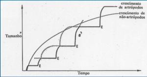 grafico artropoda